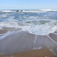 五浦の海と六角堂