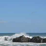 五浦の海と竜